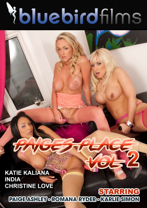 paiges place vol2